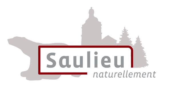 Maire de Saulieu